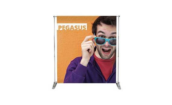 """Banner mod. """"Pegasus"""""""